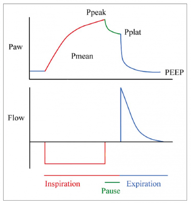 Airway pressure and flow as a function of time during one respiratory cycle.